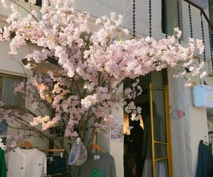 aesthetic, flowers, and pink image