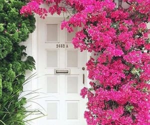 beauty, door, and city image