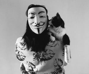 anonymous, cat, and black image