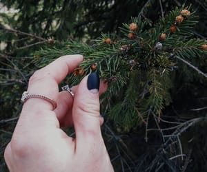 green, manicure, and nature image