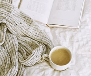 book, bookworm, and fall image