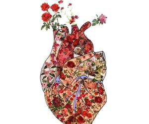 flowers, heart, and hearts image