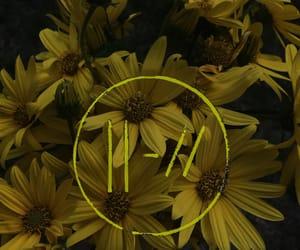 flowers, jumpsuit, and levitate image