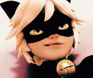 Chat Noir, miraculous, and cat noir image