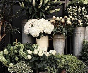 bouquets, florist, and flowers image