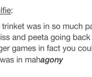 tumblr, hunger games, and catching fire image