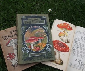 mushrooms, books, and tumblr image