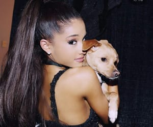 arianagrande, instagram, and aginstagram image