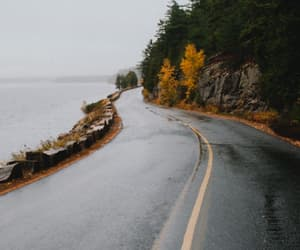 forest, ocean, and road image