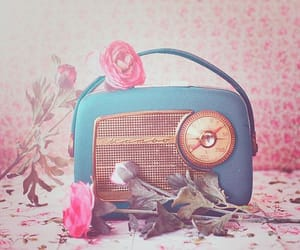 radio, flowers, and vintage image