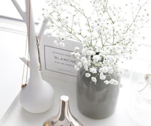 parfüme, blanche, and eau de parfume image