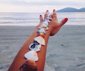arm, beach, and shells image