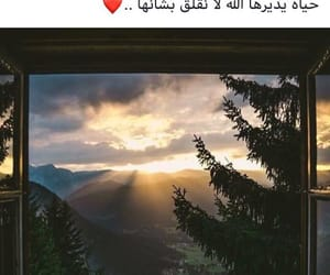 arab, arabic, and islam image