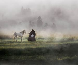 entertainment, fog, and horse image
