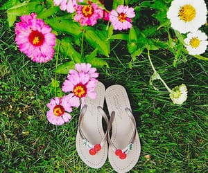 fashion, sandals, and flats image