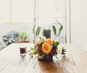 coffee, flowers, and nature image