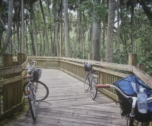 bicycles, nature, and travel image