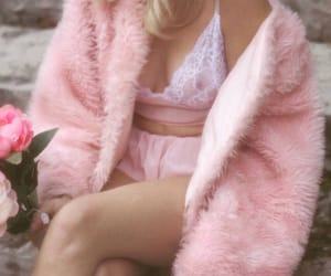 articles, fashion, and pink rose image