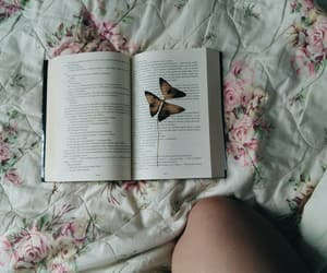 book, flowers, and home image