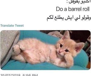 arab, راقت لي, and ترجمات image