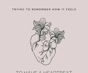 background, heart, and Lyrics image