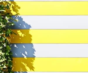 striped, stripes, and yellow and white image