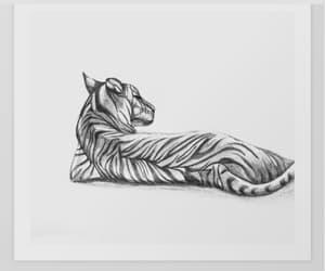 animal art, animals, and drawing image