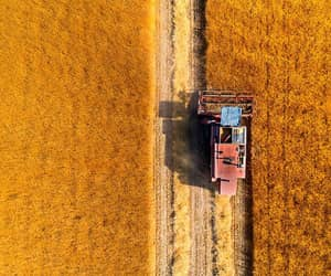 aerial photography, farmland, and landscape image