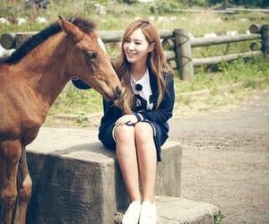 girls generation, snsd, and hyoyeon image