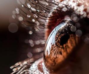 close up, photography, and eye image