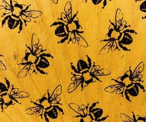 background, yellow, and bee image