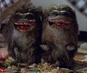 critters, horror movies, and 80s horror image