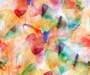 background, butterfly, and colorful image