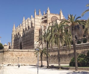 church, palms, and palma image
