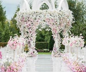 decoration and wedding image