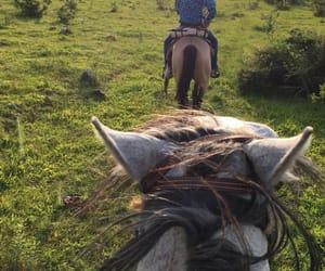 caballos, cerros, and mexico image