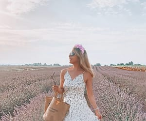 fashion, lavender, and france image