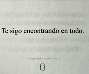 frases, words, and love image