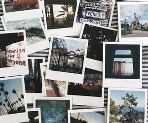 polaroid and wallpaper image