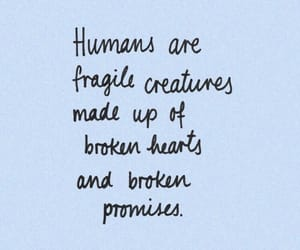 quotes, humans, and fragile image