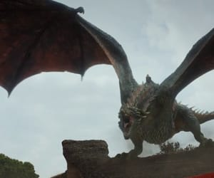 dragon, The Others, and got image