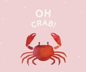 wallpaper, crab, and background image