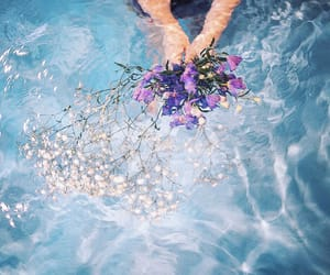 flowers, water, and blue image