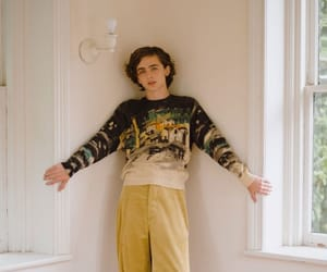 boys, fashion, and timothee image
