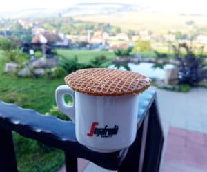coffee, morning, and nature image