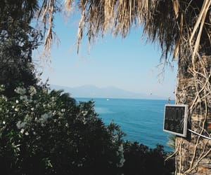 nature, sea, and summer image