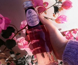 pink, drink, and aesthetic image