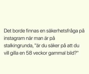bitchy, quote, and svenska image