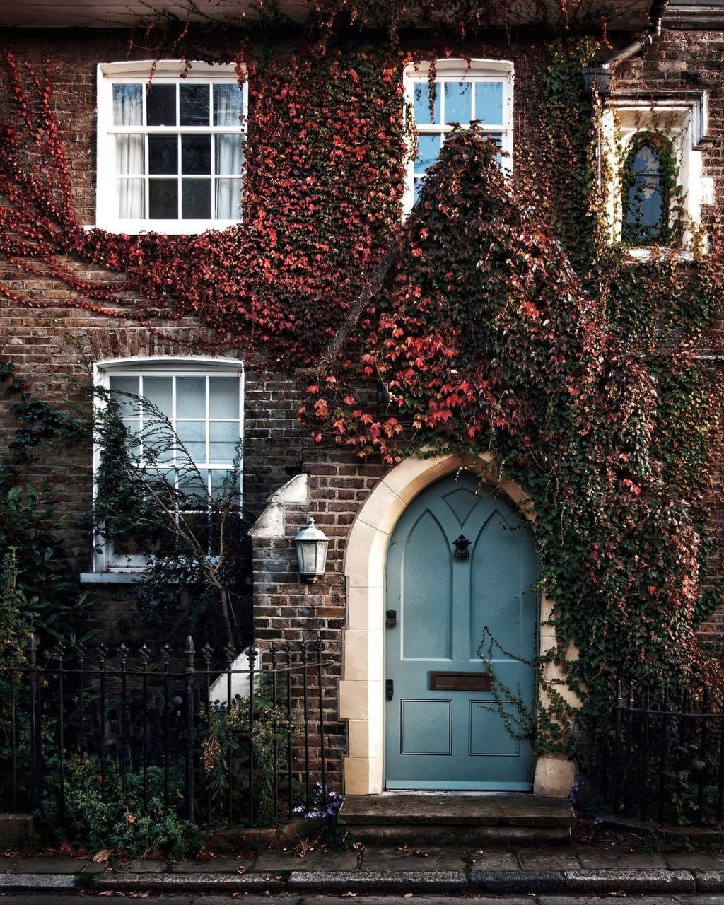 flowers, house, and autumn image