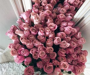 pink, flowers, and inspiration image